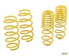 mountune Sport Spring Set  Ford Fiesta ST 2014-2017