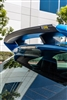mountune Carbon Fiber Rear Spoiler Lip - Focus RS