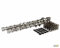 Mountune Camshaft Kit, Ford 2.0L Ecoboost Performance Upgrade - V1 | Mountune