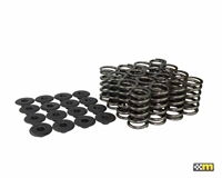 Mountune Valve Spring Set (16) Single- 2.0L Ecoboost | Mountune