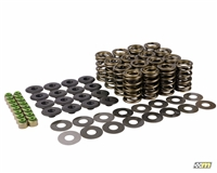 Piper Valve Spring Set, Ford Duratec (Vdsdur) - Motorsport Components | Mountune