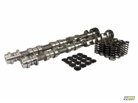 Mountune Performance Camshaft Kit, Ford 1.6L Ecoboost - V2 | Mountune