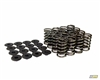 Mountune Valve Spring Set (16) Single- 1.6L Ecoboost | Mountune