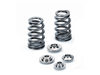 Supertech Conical Valve Spring Kit - EcoBoost