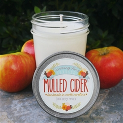 Mulled Cider Jelly Jar Candle