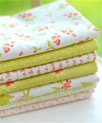 Sprouts & Daisies Bundle