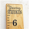"Add-On ""Our Growing Grandkids"" Top Header"