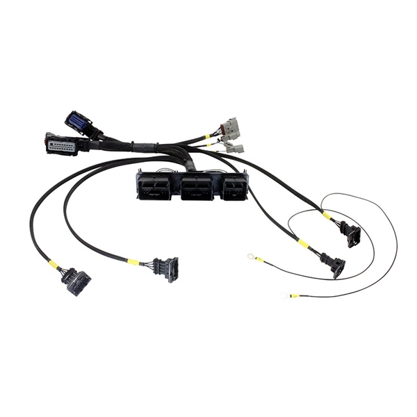 Cool Aem Infinity 7 Series Ems Plug N Play Wiring Harness For Ford Wiring Digital Resources Timewpwclawcorpcom