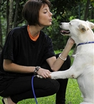 Canine Behaviour and Training