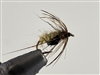 GINGER PUPAE SOFT HACKLE