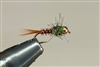 TB ORANGE PHEASANT TAIL NYMPH
