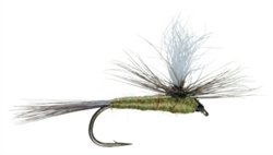 BLUE WING OLIVE PARACHUTE - SIZE 24