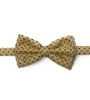 Renaissance Gold Pre-Tied Bow Tie Set - Includes Matching Pocket Square DPTBT1326