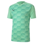 Puma Final Graphic Jersey SS (J)