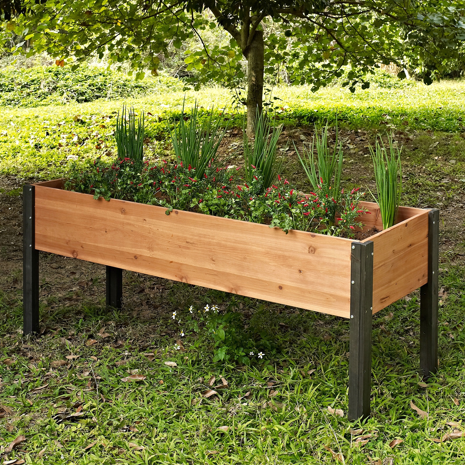 Elevated Outdoor Raised Garden Bed Planter Box