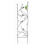 浓咖啡中的Ft高花园网格与金属鸟分支设计