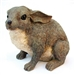 Bunny Rabbit Outdoor Garden Statue in Brown Resin