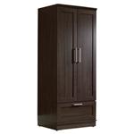 深褐色的实木衣柜带衣橱柜衣橱