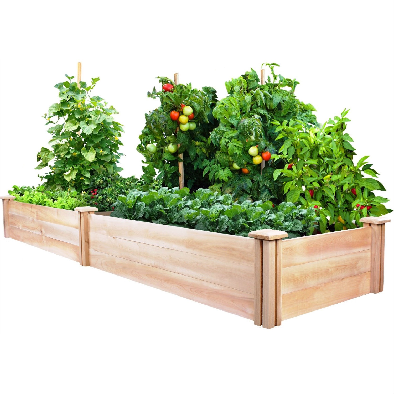 Cedar Wood 2 Ft X 8 Ft Outdoor Raised Garden Bed Planter Frame