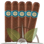 Warped Corto X50 Pack of 5 Cigars