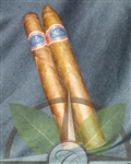 Warped Futuro Seleccion Sampler 4 Pack