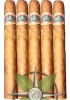 Warped Futuro Seleccion Suprema 5 Pack