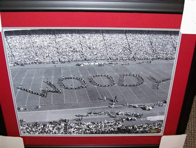 Ohio State Marching Band Spelling Woody 16 x 20 Framed