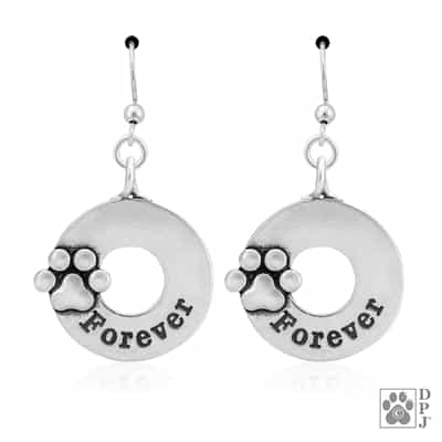 Sterling Silver Forever Earrings