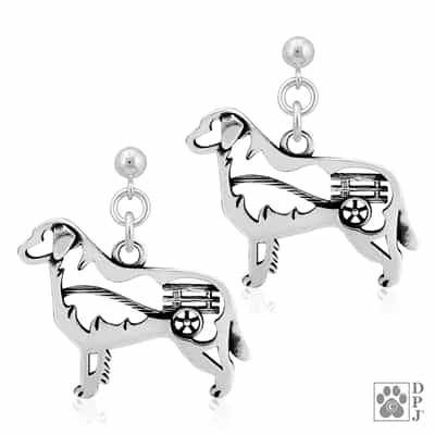 Bernese Mountain Dog Earrings, Bernese Mountain Dog Breed Jewelry