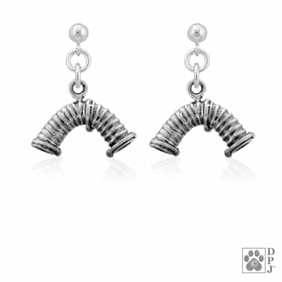 Sterling Silver Agility Tunnel Earrings