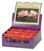 Aromatherapy Two Scented Square Votives - Romantic Evening - Jasmine & Rose