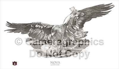 "Nova, War Eagle VII ""Game Day"" Limited Ed. Art Print"