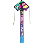 Jumbo Easy Flyer 5:00 Kite by Premier Kites. Line included.