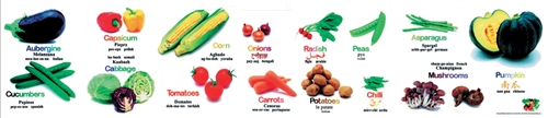 Vegetables Poster-Multilingual Edition, Multicultural Poster