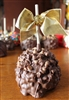 Peanut Butter Chip Caramel-Chocolate Apple
