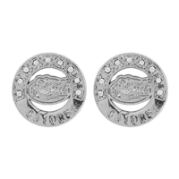 Stylish Florida Gators Crystal Round Silver Earrings