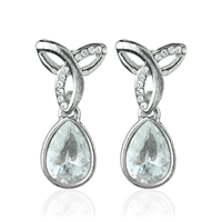 Teardrop Point Earrings