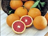 RED NAVEL ORANGE– Citrus sinensis 'Cara Cara' ZONE 8b
