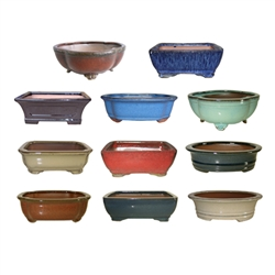 "BONSAI POT ASSORTMENT 5"" MULTICOLORS"