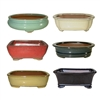 "BONSAI POT ASSORTMENT 10"" MULTICOLORS"