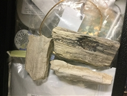 PETRIFIED WOOD OR PALM WOOD FOR CUTTING, WIRE WRAPPING