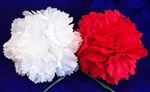 LYNCH CARNATION BOUTONNIERES
