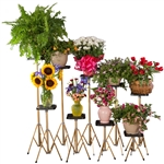 XL BASIC GOLD FLOWER STANDS