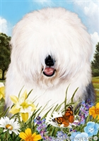 Old English Sheepdog Small Decorative Garden Flag