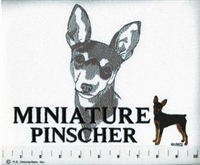 Miniature Pinscher Classic Embroidered Tee Shirt or Sweatshirt, Clothing for Dog and Cat Lovers at www.saltypaws.com