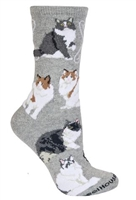 Ragamuffin Cat  Novelty Socks SaltyPaws.com