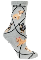 Chiweenie Novelty Socks SaltyPaws.com