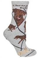 Chesapeake Bay Retriever Novelty Socks SaltyPaws.com