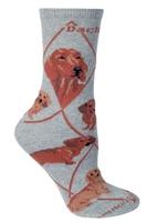 Dachshund Red Novelty Socks SaltyPaws.com