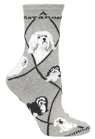 Havanese Novelty Socks SaltyPaws.com